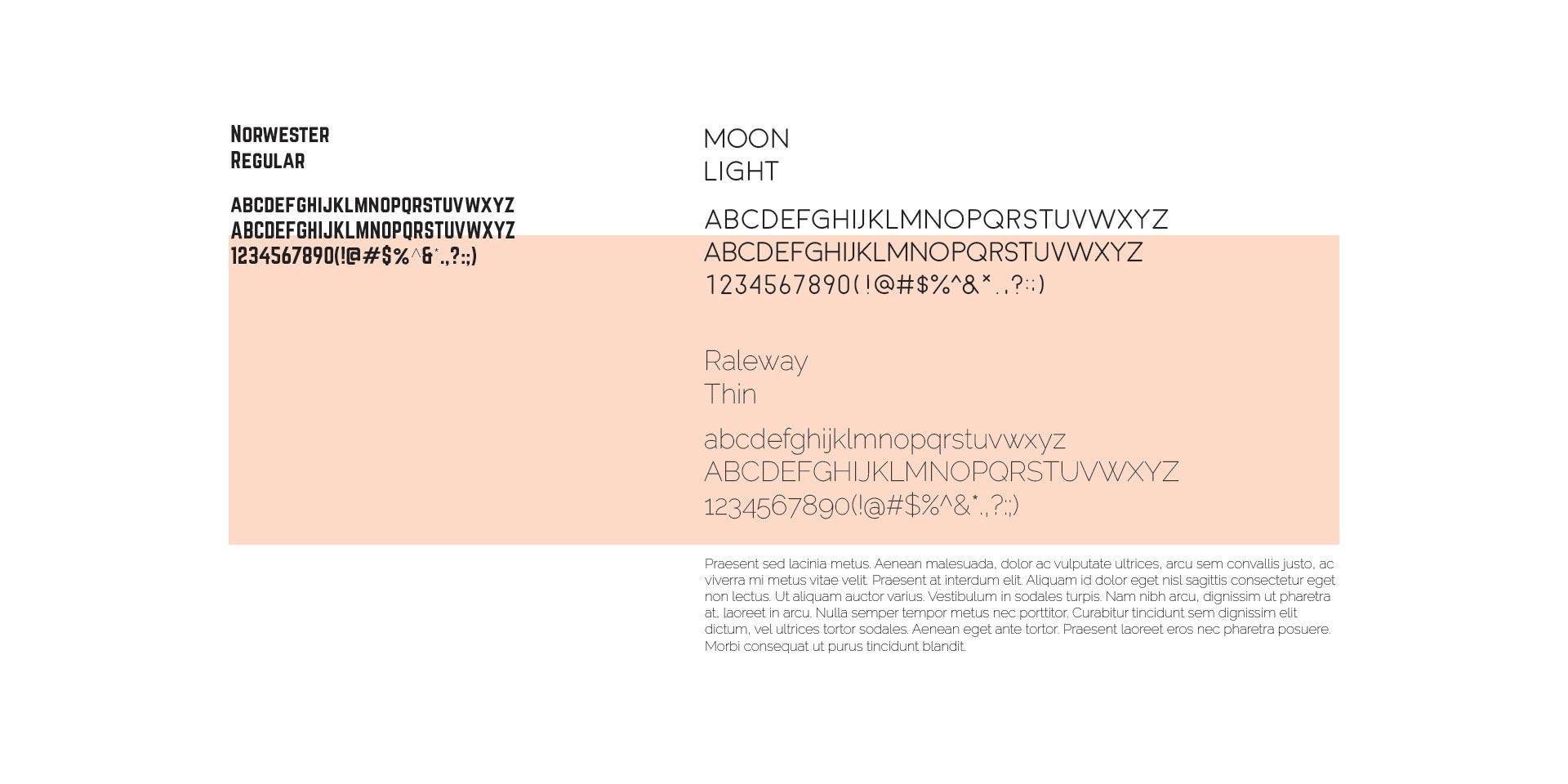 wb_fonts